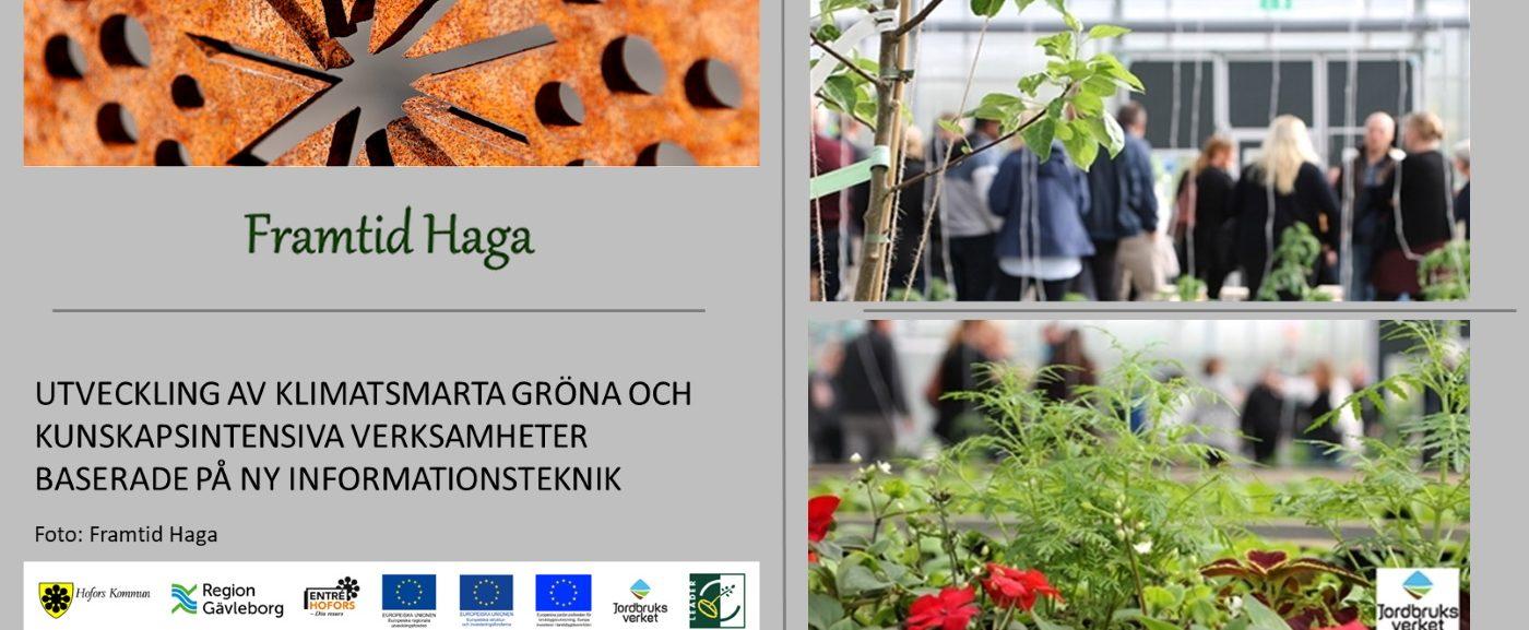 """Utveckling av """"Gröna näringar"""" i Hofors, Gävleborg och Norra mellansverige"""